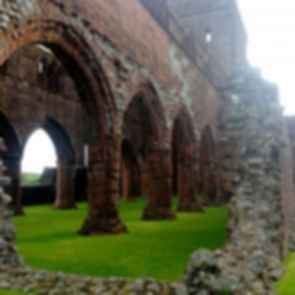 Sweetheart Abbey - Pillars