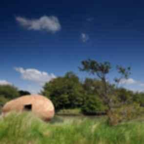 The Exbury Egg - Exterior/Landscape