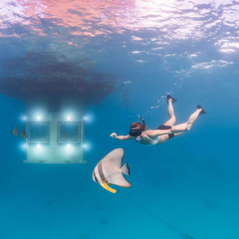 The Manta Resort - Underwater View