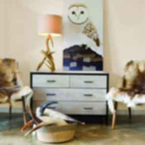 Simplistic Modern Lounge