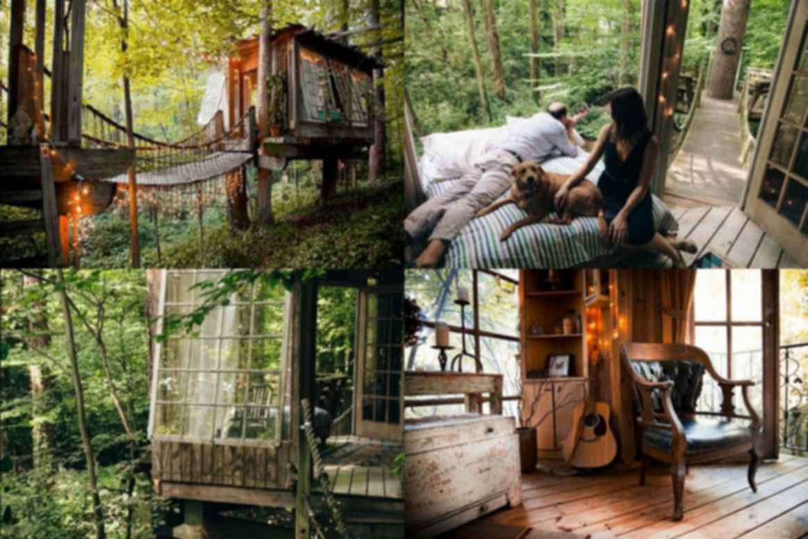 Atlanta Treehouse - Exterior/Interior