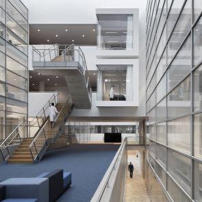 Center of Brain, Behavior and Metabolism - Interior/Stairs/Atrium