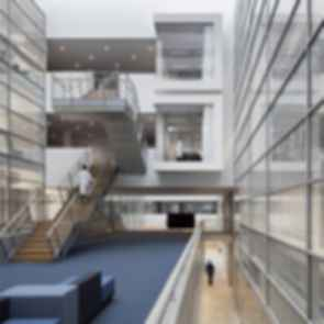 Center of Brain, Behavior and Metabolism - Interior/Stairs/Atrium