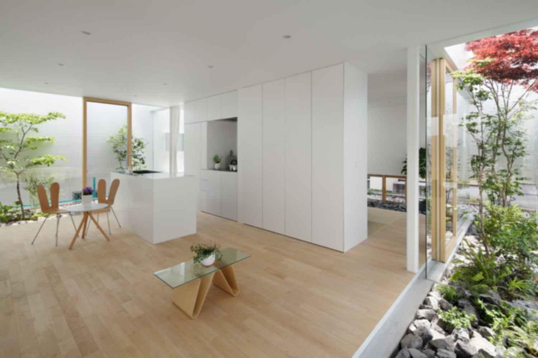 Green Edge House - Interior