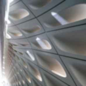 The Broad Museum - Interior/Facade