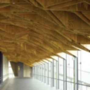 Hoshakuji Station - Ceiling