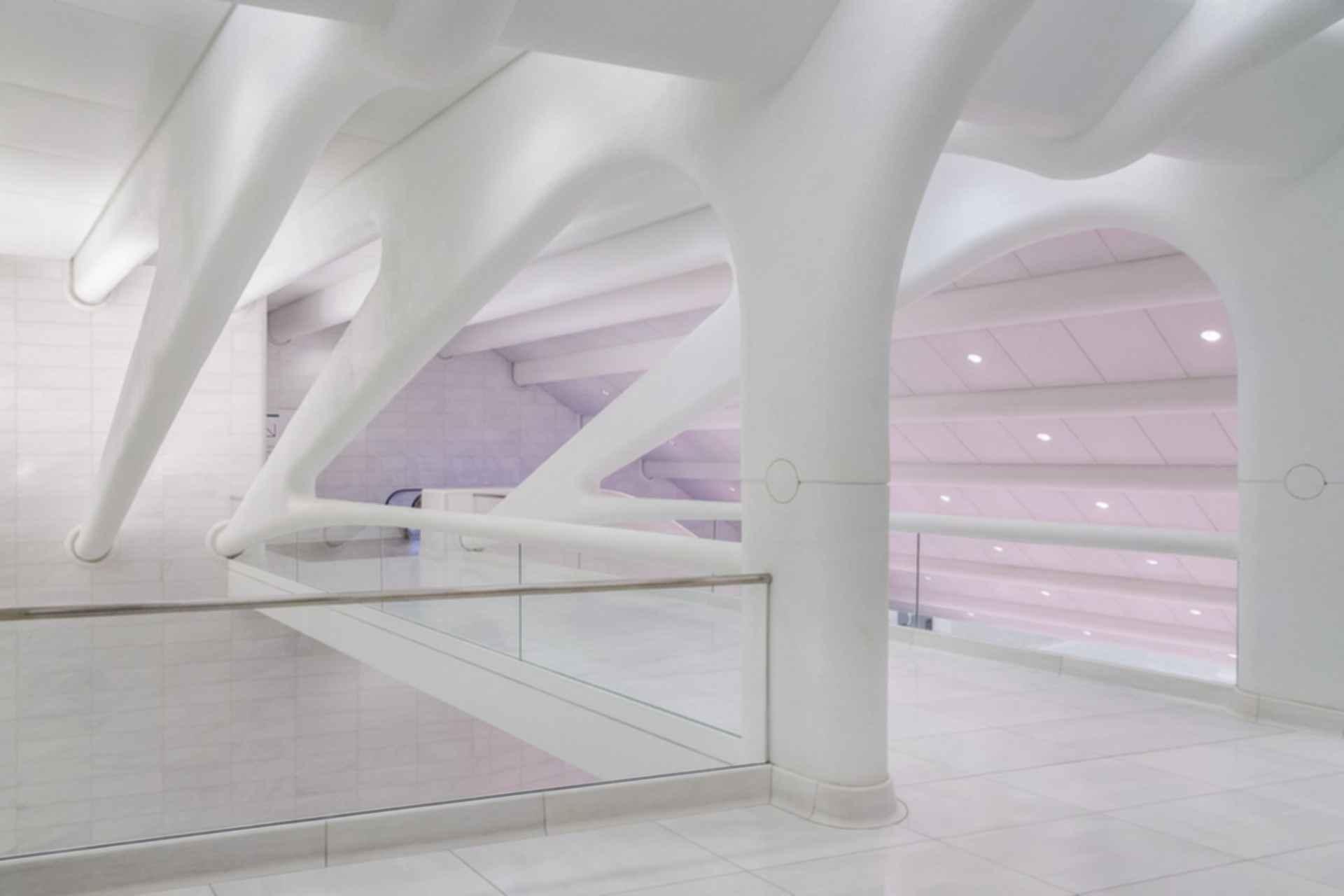 Oculus - Interior