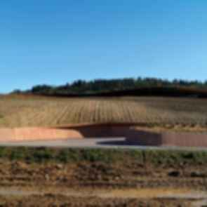 Antinori Winery - exterior/landscaping
