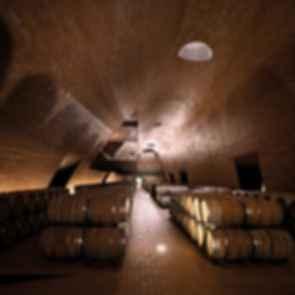 Antinori Winery - interior