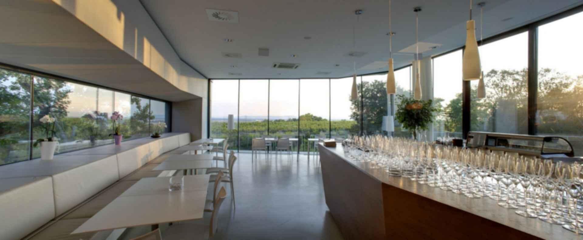 Weritas-Regional Visitor and Wine Center - Interior