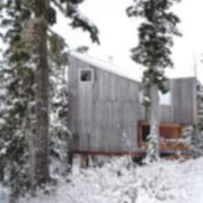 Alpine Cabin - exterior