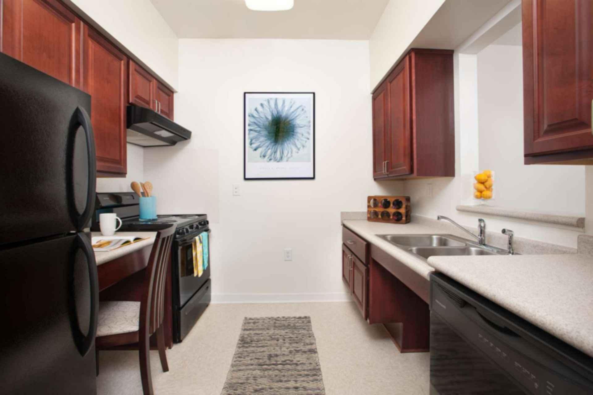 Somanath Seniors Apartments - Net Zero Living - interior/kitchen