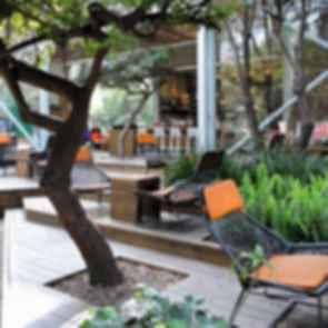 Mexico City Starbucks - Outdoor Area
