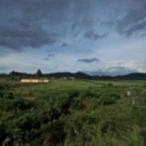 Pilgrim Route Shelter - Exterior/Landscape