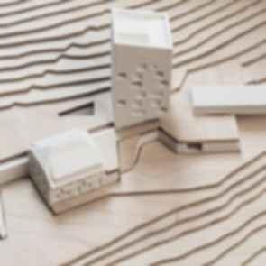 Hotel Belchenhaus Proposal - 3D Models