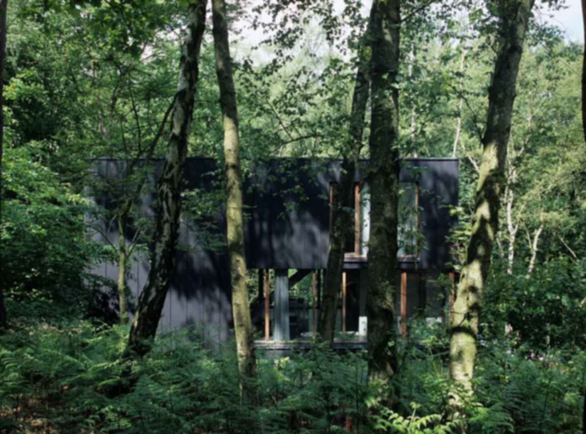 Pavilion in the Woods - Exterior