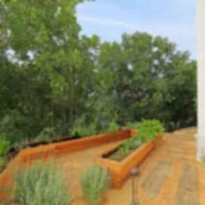 Hollywood Hills Residence - Vegetable Garden