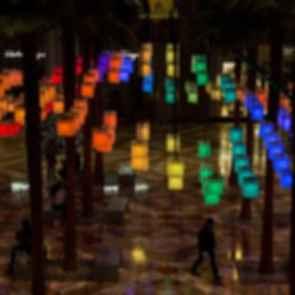 Luminaries - Lanterns