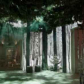 Jonathan Ive's Christmas Forest - Display