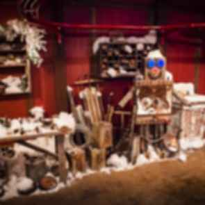 The North Pole Experience - Snow Exhibition