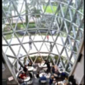 Salvador Dali Museum - Interior/Cafe Seating