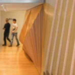 Tasmanian Museum and Art Gallery - Interior/Wall