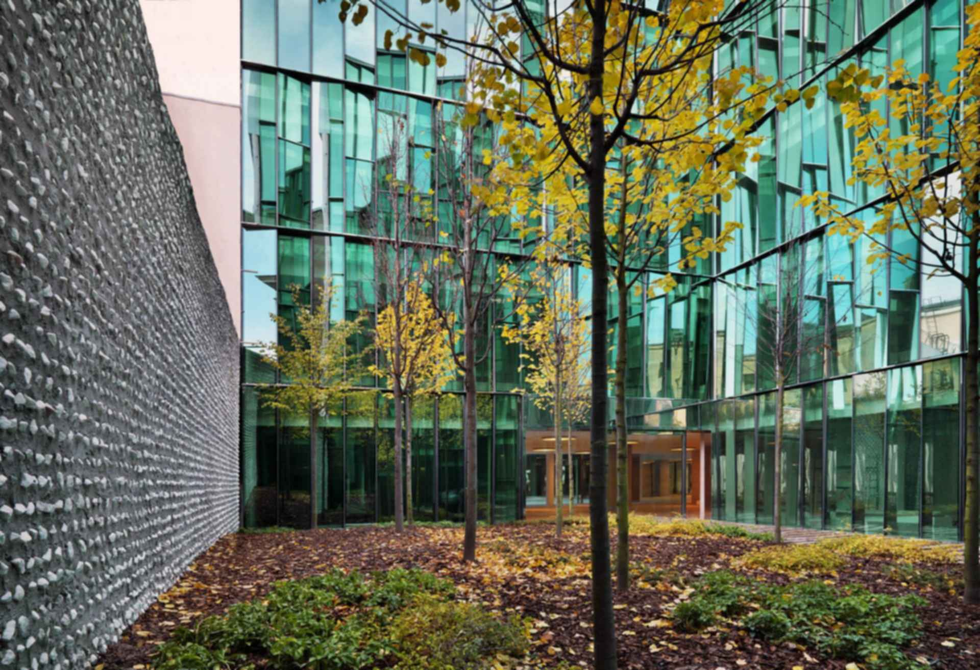 Quattro Corti Business Center - Exterior/Glass Facade