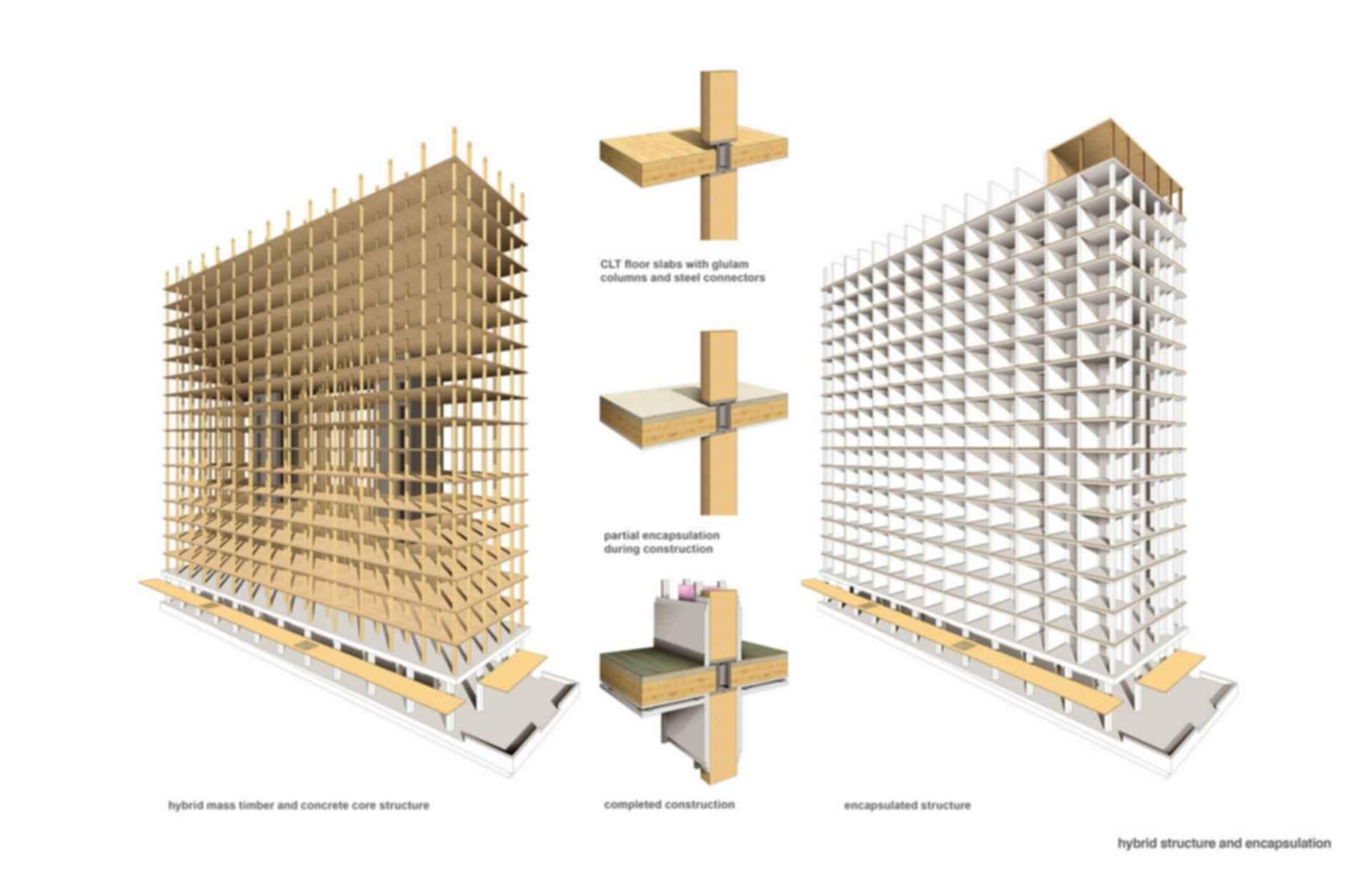 TallWood House - Concept Design