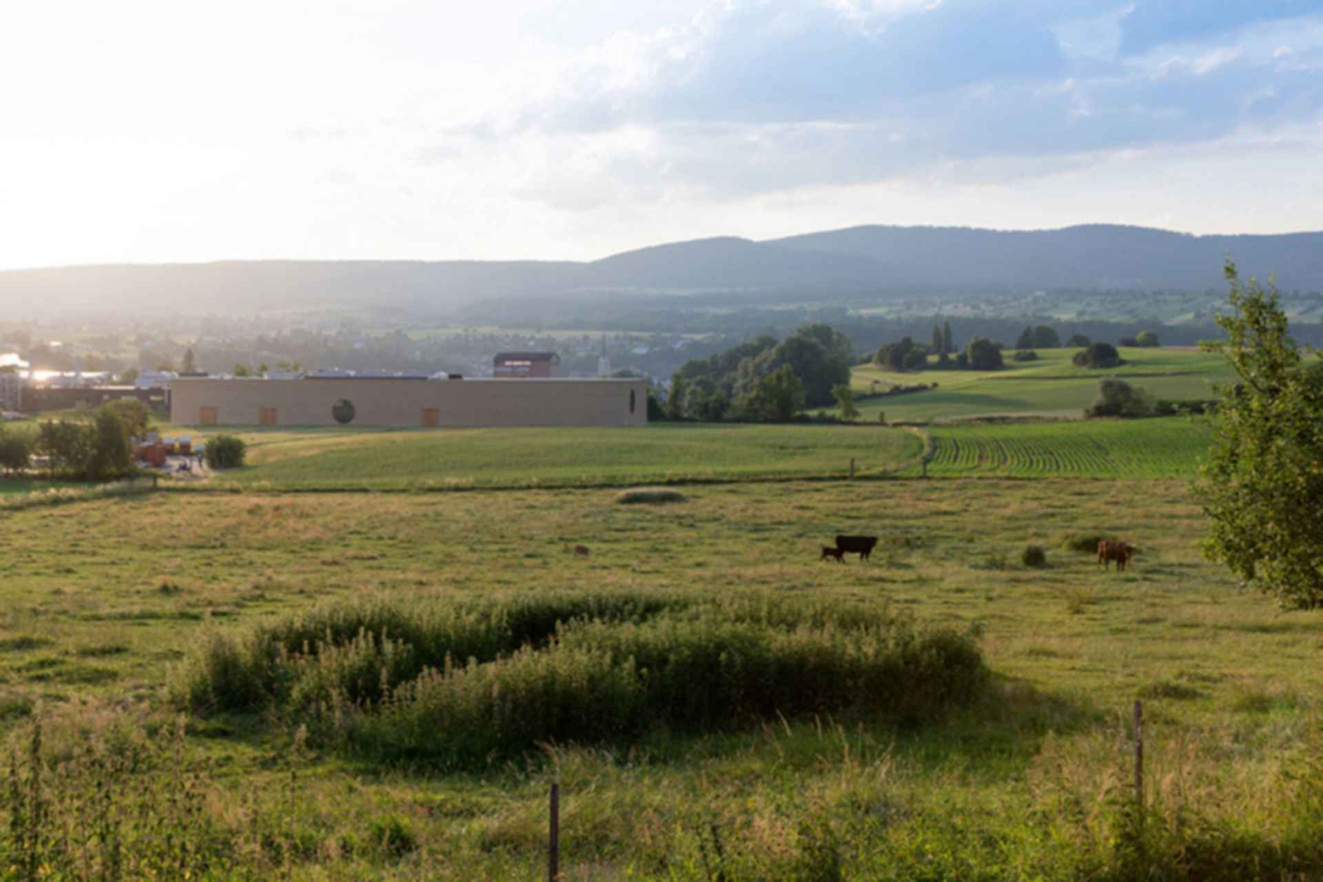 Ricola Krauterzentrum - exterior landscape