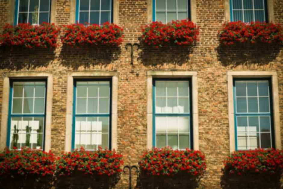 Georgian style window facade