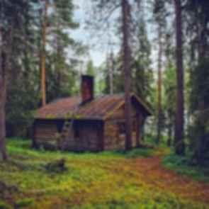 Log cabin - exterior