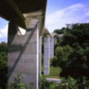 The Henderson Wave Bridge - Pillars