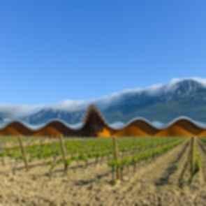 Bodegas Ysios Winery - Exterior
