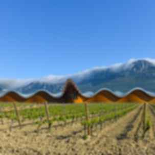 Exceptional Wineries
