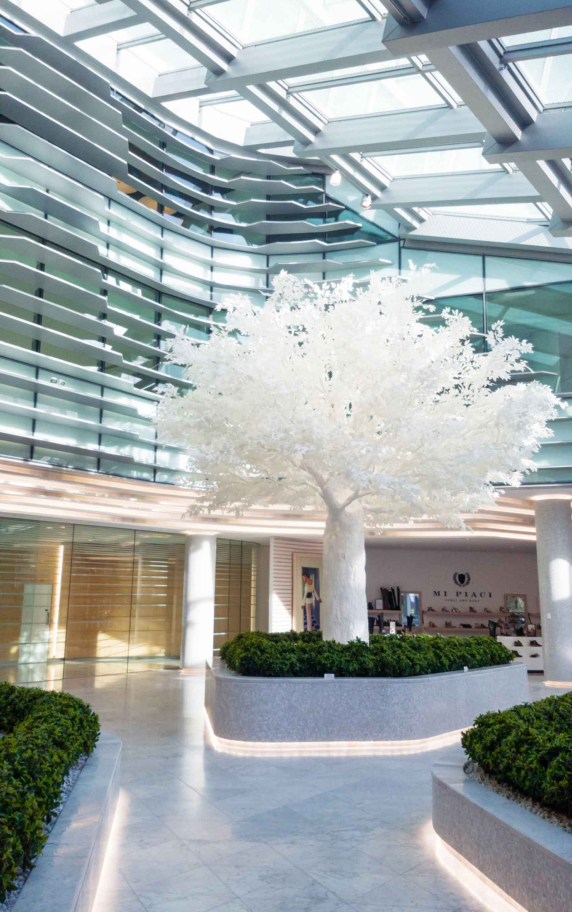 Office Lobby with White Tree