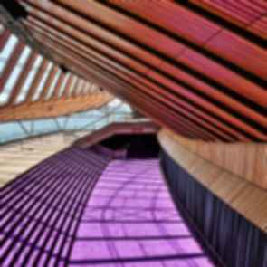 Sydney Opera House - Interior Ceiling