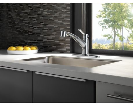 Single Handle Pull-Out Kitchen/Arctic Stainless
