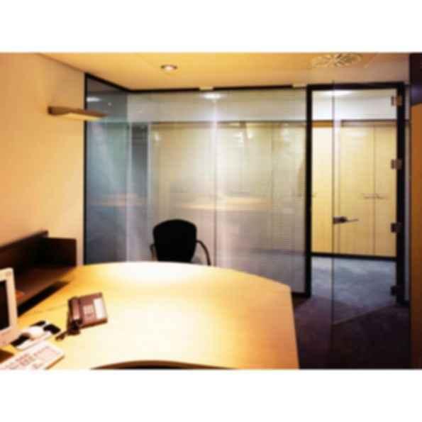 Single Glazed Frameless Glass Pivot Doors
