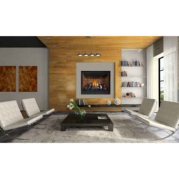 Direct Vent Fireplaces - High Definition™ 46