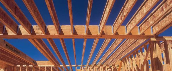 Engineered wood for Roof framing cost