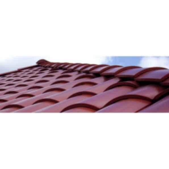 Berridge Bermuda Roof Panel