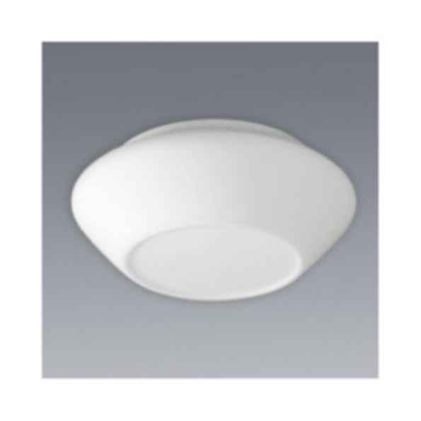 Favo Ceiling Lamp