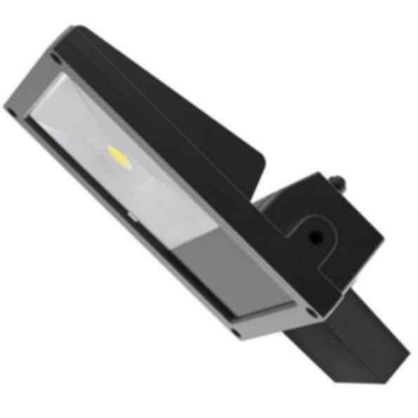 Arkitekt AR Series Luminaire