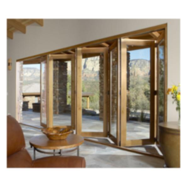 Vista Pointe Bi-Fold/Multi-Slide Patio Door