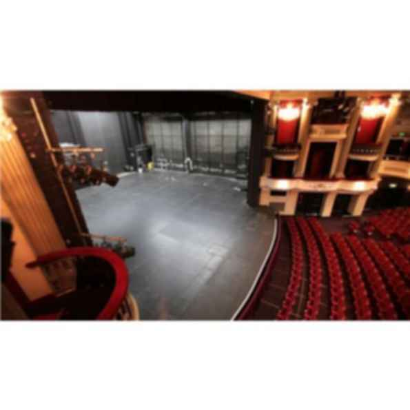 Harlequin Standfast™ Vinyl Dance, Performance & Stage Floor