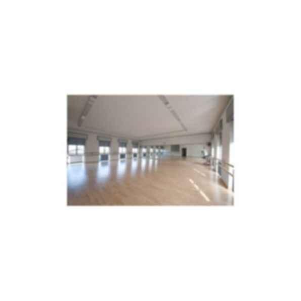 Harlequin Fiesta™ Vinyl Dance & Performance Floor