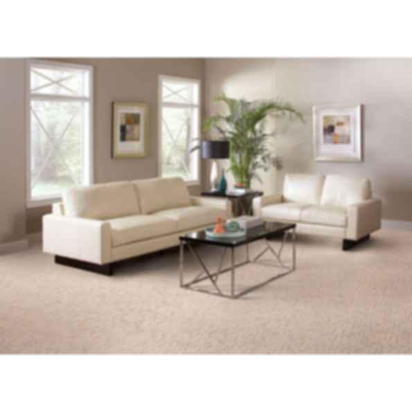 Artistic Vision Carpet