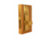 ML900 Mortise Lock with Knob Escutcheon