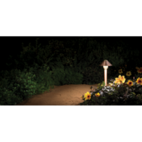 BD LED Path Light