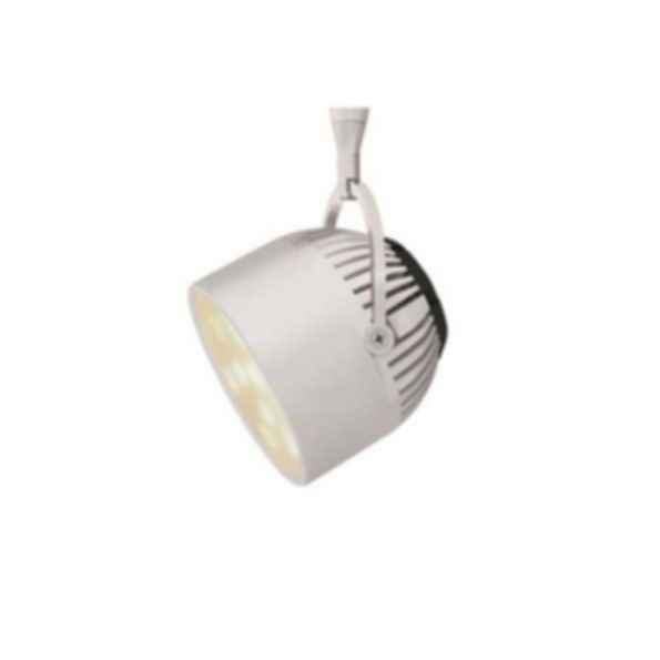 Atlas LED Light Fixture